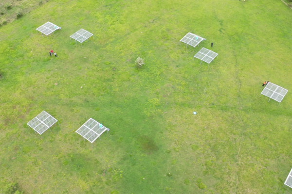 drone plot in Wytham Woods