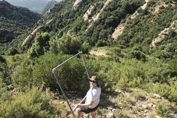 examining recruitment of cistus albidus catalonia spain credit r salguero gomez