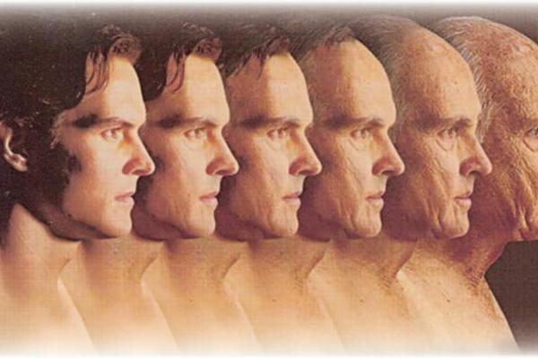 human ageing longevity and life span4