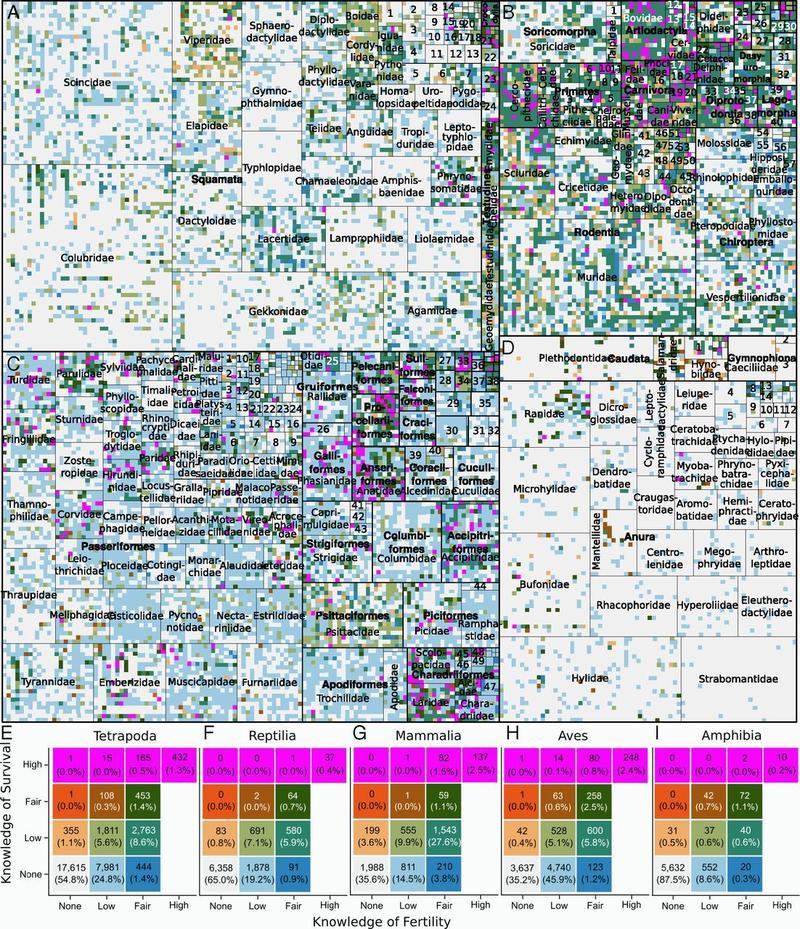 demographic knowledge across tetrapods conde et al 2019 pnas