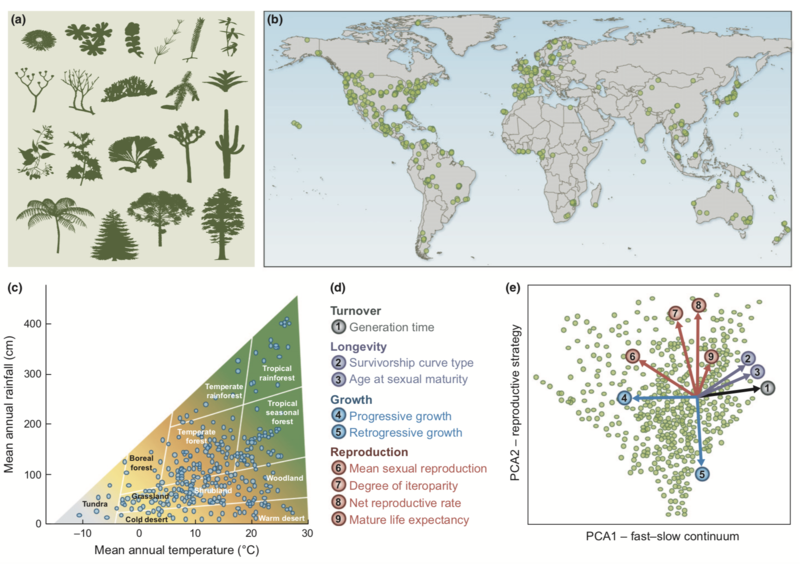 plant types geographic and climatic distribution of species explored in salguero gomez 2017 new phytol