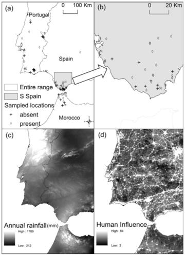 sampled locations of the carnivorous plant species drosophyllum lusitanicum in the iberian peninsula paniw et al 2015 biol cons